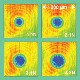 Thermal images of the contact at different loads